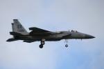utarou on NRTさんが、嘉手納飛行場で撮影したアメリカ空軍 F-15C-40-MC Eagleの航空フォト(写真)