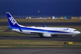 とらとらさんが、羽田空港で撮影した全日空 737-881の航空フォト(飛行機 写真・画像)