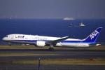 とらとらさんが、羽田空港で撮影した全日空 787-9の航空フォト(写真)
