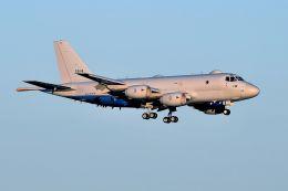 うめやしきさんが、厚木飛行場で撮影した海上自衛隊 P-1の航空フォト(写真)