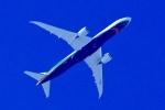 くれないさんが、徳島空港で撮影したエバー航空 787-9の航空フォト(飛行機 写真・画像)