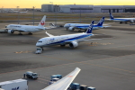 ★azusa★さんが、羽田空港で撮影した全日空 787-9の航空フォト(写真)