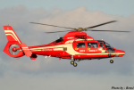 れんしさんが、福岡空港で撮影した福岡市消防局消防航空隊 AS365N3 Dauphin 2の航空フォト(写真)