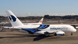 Cassiopeia737さんが、成田国際空港で撮影したマレーシア航空 A380-841の航空フォト(飛行機 写真・画像)