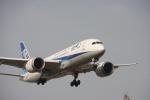 おがりょうさんが、福岡空港で撮影した全日空 787-8 Dreamlinerの航空フォト(写真)