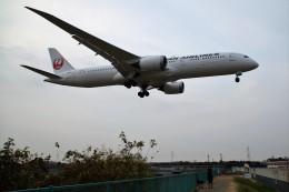 HK Express43さんが、伊丹空港で撮影した日本航空 787-9の航空フォト(飛行機 写真・画像)