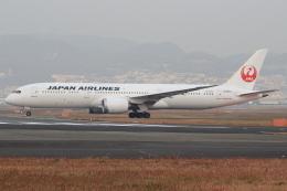 キイロイトリさんが、伊丹空港で撮影した日本航空 787-9の航空フォト(飛行機 写真・画像)