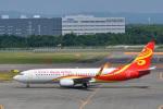 パンダさんが、新千歳空港で撮影した海南航空 737-84Pの航空フォト(飛行機 写真・画像)