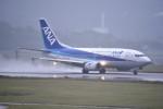 kumagorouさんが、新石垣空港で撮影したANAウイングス 737-5L9の航空フォト(飛行機 写真・画像)