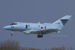Scotchさんが、名古屋飛行場で撮影した航空自衛隊 U-125A (BAe-125-800SM)の航空フォト(写真)