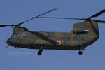 Scotchさんが、名古屋飛行場で撮影した陸上自衛隊 CH-47Jの航空フォト(写真)
