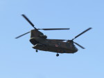 F.YUKIHIDEさんが、笠岡ふれあい空港で撮影した陸上自衛隊 CH-47Jの航空フォト(写真)