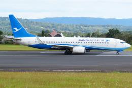 Gujirinkaさんが、フランシスコ・バンゴイ国際空港で撮影した厦門航空 737-85Cの航空フォト(飛行機 写真・画像)