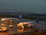 ナナオさんが、石見空港で撮影した全日空 A321-272Nの航空フォト(飛行機 写真・画像)
