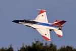 new_2106さんが、岐阜基地で撮影した航空自衛隊 F-2Bの航空フォト(写真)