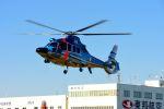 まいけるさんが、東京ヘリポートで撮影した警視庁 EC155B1の航空フォト(写真)