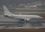 VIPERさんが、羽田空港で撮影したジョンリン・エア・トランスポート 737-73Q BBJの航空フォト(写真)