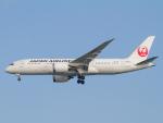 Mame @ TYOさんが、羽田空港で撮影した日本航空 787-8 Dreamlinerの航空フォト(写真)