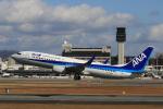 ゴハチさんが、伊丹空港で撮影した全日空 737-881の航空フォト(写真)