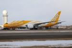 北の熊さんが、新千歳空港で撮影したスクート 787-8 Dreamlinerの航空フォト(写真)