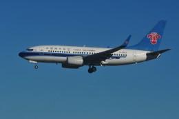 tassさんが、成田国際空港で撮影した中国南方航空 737の航空フォト(写真)