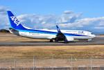 mojioさんが、静岡空港で撮影した全日空 737-8ALの航空フォト(写真)
