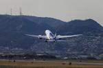たろさんが、伊丹空港で撮影した全日空 787-8 Dreamlinerの航空フォト(写真)