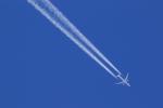 noriphotoさんが、札幌飛行場で撮影した全日空 777-381/ERの航空フォト(写真)