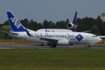 tassさんが、成田国際空港で撮影した全日空 737-781/ERの航空フォト(飛行機 写真・画像)