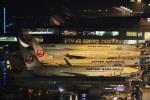 camelliaさんが、成田国際空港で撮影した日本航空 787-8 Dreamlinerの航空フォト(写真)