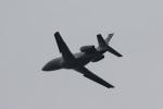 camelliaさんが、成田国際空港で撮影したグローバル・ジェット・チャーターズ Falcon 2000EXの航空フォト(写真)