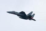 szkkjさんが、茨城空港で撮影した航空自衛隊 F-15J Eagleの航空フォト(写真)
