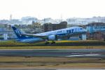 we love kixさんが、伊丹空港で撮影した全日空 787-8 Dreamlinerの航空フォト(飛行機 写真・画像)
