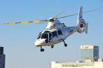 まいけるさんが、東京ヘリポートで撮影したエアバス・ヘリコプターズ・ジャパン AS365N2 Dauphin 2の航空フォト(写真)