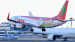 パンダさんが、成田国際空港で撮影したティーウェイ航空 737-8Q8の航空フォト(写真)