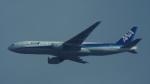 otromarkさんが、八尾空港で撮影した全日空 777-281の航空フォト(写真)