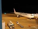 TFALさんが、福島空港で撮影した日本航空 767-346/ERの航空フォト(写真)