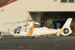 mogusaenさんが、調布飛行場で撮影した東邦航空 SA365N1 Dauphin 2の航空フォト(写真)