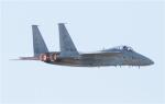 condorさんが、岐阜基地で撮影した航空自衛隊 F-15J Eagleの航空フォト(写真)