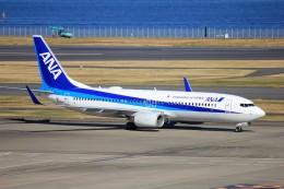 KEI_NHさんが、羽田空港で撮影した全日空 737-881の航空フォト(飛行機 写真・画像)