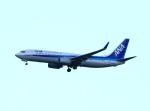 garrettさんが、成田国際空港で撮影した全日空 737-881の航空フォト(写真)