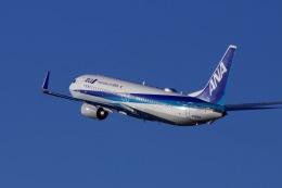M.airphotoさんが、宮崎空港で撮影した全日空 737-881の航空フォト(飛行機 写真・画像)