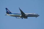 pringlesさんが、長崎空港で撮影した全日空 737-8ALの航空フォト(写真)