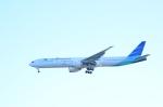 hareotokoさんが、羽田空港で撮影したガルーダ・インドネシア航空 777-3U3/ERの航空フォト(飛行機 写真・画像)