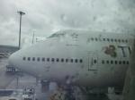 たまきちくんさんが、チェンマイ国際空港で撮影したタイ国際航空 747-4D7の航空フォト(写真)