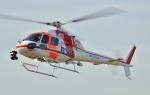 Soraya_Projectさんが、東京ヘリポートで撮影した朝日航洋 AS355F1 Ecureuil 2の航空フォト(写真)