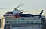 Soraya_Projectさんが、東京ヘリポートで撮影したノエビア AS350B3 Ecureuilの航空フォト(写真)