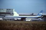 tassさんが、成田国際空港で撮影したインターステート・エアラインズ DC-8-62(F)の航空フォト(飛行機 写真・画像)