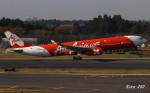 RINA-281さんが、成田国際空港で撮影したインドネシア・エアアジア・エックス A330-343Xの航空フォト(写真)