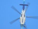ランチパッドさんが、富士川滑空場で撮影した東邦航空 EC155Bの航空フォト(写真)